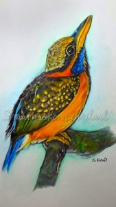 rufouscollared kingfisher